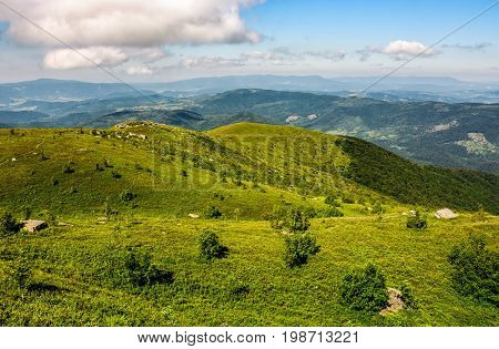 Picturesque Landscape With Grassy Mountain Meadow