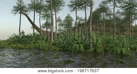 3d rendering of the walking mamenchisaurus