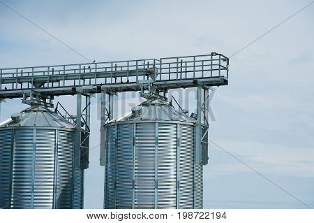 Steel Grain Silos Used To Store Grain