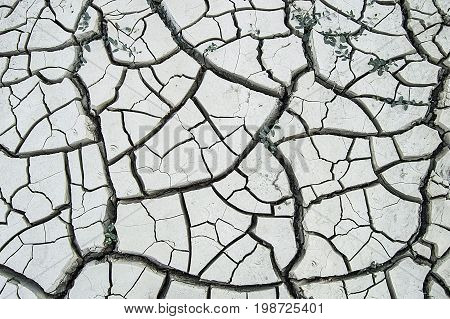 Global warming drought, arid soils separated from thirst