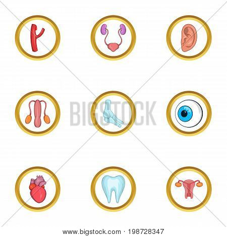 Human organs icon set. Cartoon set of 9 human organs vector icons for web isolated on white background