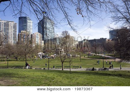 Pond In Boston Common Garden