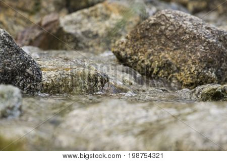 Fragment of a Mountain stream with a rock at a height of 2000 meters from sea level
