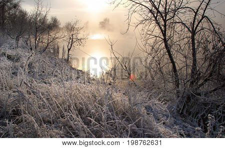 Frosty Morning On The River