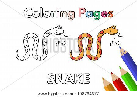 Cartoon snake illustration. Vector coloring book pages for children