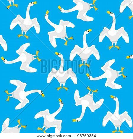 Birds geese on turn blue background is insulated