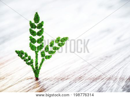 Green Wheat Sign On Blurred Wooden Background. 3D Illustration.