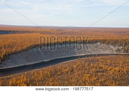 Siberian river and larch taiga in the fall from the helicopter Moieyrokhan River Evenkia Krasnoyarsk region Russia