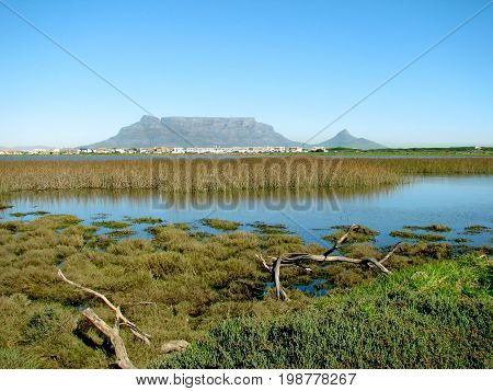 VIEW OF TABLE MOUNTAIN FROM RIETVLEI, CAPE TOWN, SOUTH AFRICA 36gt