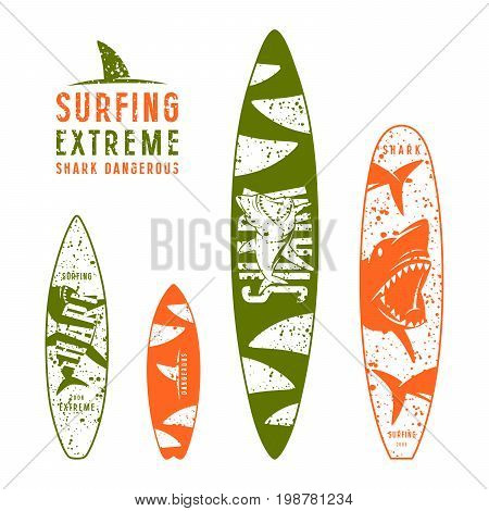 Surfboard Graphic Design With The Image Of Sharks
