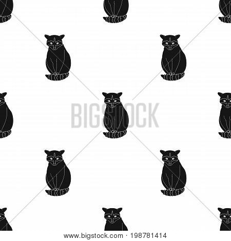 Raccoon.Animals single icon in black style vector symbol stock illustration .