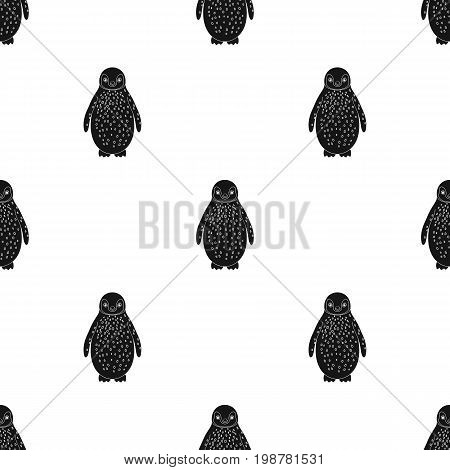 Penguin.Animals single icon in black style vector symbol stock illustration .