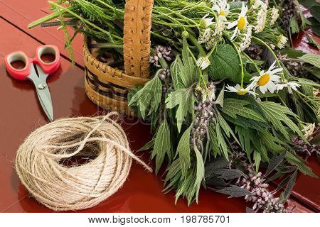 Medicinal plants are prepared for drying. Harvesting medicinal plants. Motherwort chamomile yarrow in basket scissors and string on brown wooden table
