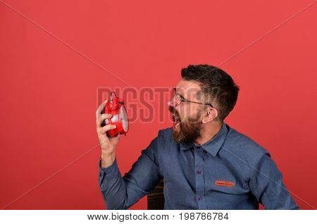 Man with angry face expression sits and clock. Manager with beard and glasses holds old alarm clock on red background. Deadline and working hours concept. Retro clock and mad worker
