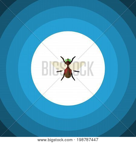 Bluebottle Vector Element Can Be Used For Dung, Fly, Bluebottle Design Concept.  Isolated Dung Flat Icon.