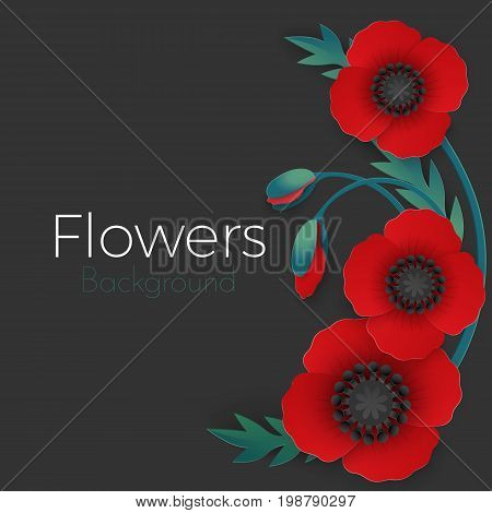 Flowers background with full blown and still blooming red poppies with green stem and leaves isolated on black background vector illustration
