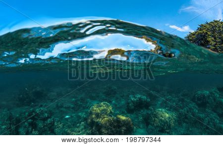 Double landscape with sea and sky. Sea water split photo. Undersea view of coral. Tropical island seashore nature. Above and below sea waterline. Blue seawater wave. Coral reef panorama. Exotic island