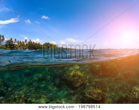 Split landscape with sea and sky. Double photo with tropical island and underwater coral reef. Above and below sea waterline. Exotic seashore panorama. Split seascape of tropical island lagoon in sun