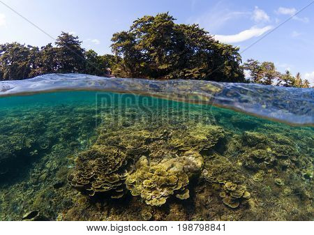 Double landscape with sea and sky. Seascape split photo. Tropical island lagoon. Underwater coral reef. Above and below waterline sea view. Exotic seashore wild nature view. Sunlight on sea corals