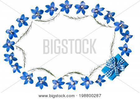 Festive oval flower vignette. Blue delphinium flowers gift in blue packing and asparagus twigs isolated on white background. Top view flat lay
