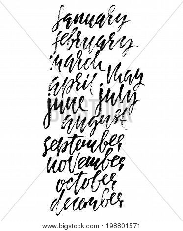 Hand drawn set of months. Modern dry brush lettering. Names of the months. Vector illustration. Handwritten grunge inscription