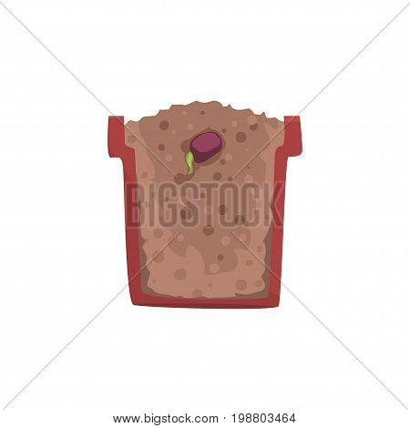 Seed of a bean germinating in a pot with ground soil, stage of growth, pot in a cross section vector Illustration on a white background