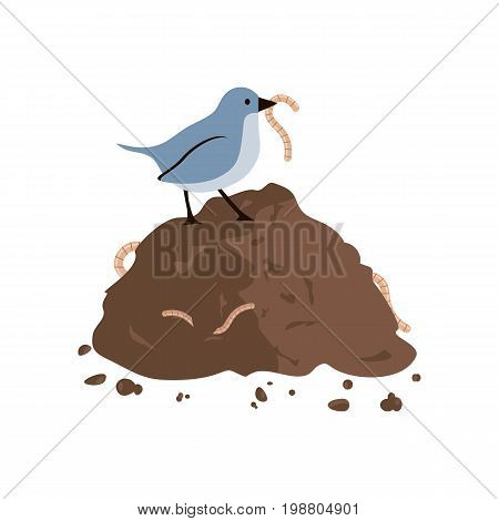 Bird eating a worm sitting on a pile of ground. Vector illustration flat design