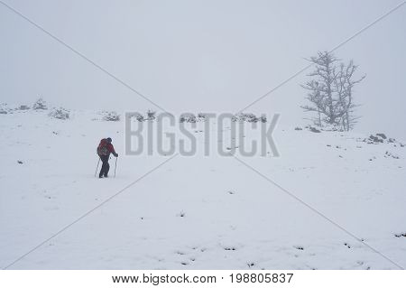 Adventurer Climbs To The Mountain Pass In A Fog