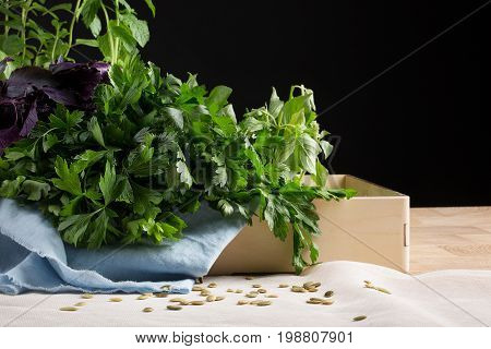 Various kind of fresh herbs in a box and on a saturated black background. Fresh parsley, purple and green basil on the table. Healthful, natural and rustic herbs for salads.