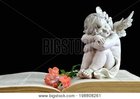 Angel guardian sleeping on the old book