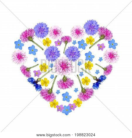 Colorful floral heart from cornflowers and other gentle wild flowers on a white background. Beautiful spring or summer design for invitation or greeting card