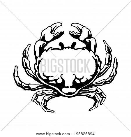 Crab sea animal silhouette. Cancer Zodiac Vector illustration. Logo graphics seafood,eps8,eps10