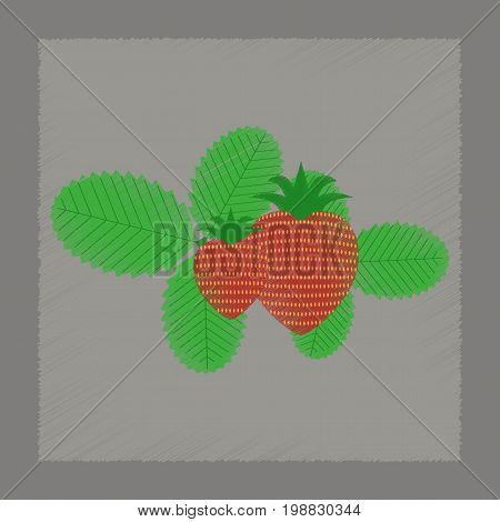 flat shading style Illustrations of plant Fragaria