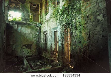 Creepy ruined and overgrown by plants interior of old mansion in Abkhazia. Life after humanity post-apocalyptic concept