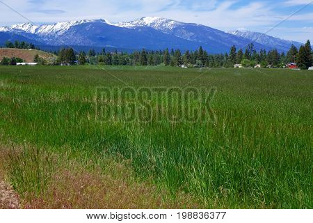 Montana's Bitterroot Mountains provide a beautiful background for ranches and farms.