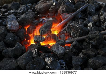 close-up of a furnacemetal is heated in the forge on coals with hot flaming coal