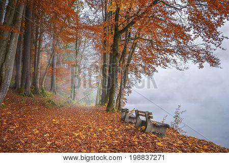 Misty lake shore and autumn woods - Wooden benches on the shore of the Alpsee lake surrounded by mist and forest in autumnal colors in Fussen Germany.