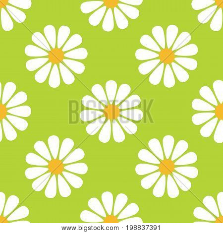 Daisy seamless pattern. Flowers pattern. Vector stock.