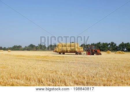 Agriculture - tractor carries a haystack. Tractor with hay.