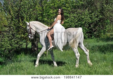 young attractive woman in white dress horseback riding on white horse in the summer meadow