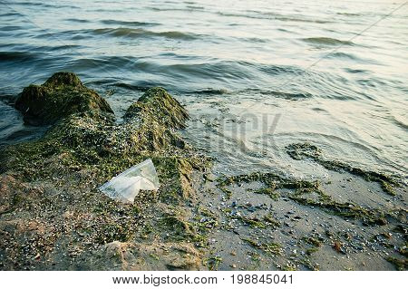 Pollution Of The Sea With Plastic Bags. Ecology Problem.dirty Sea In Seaweed. The Sea Is Flowering