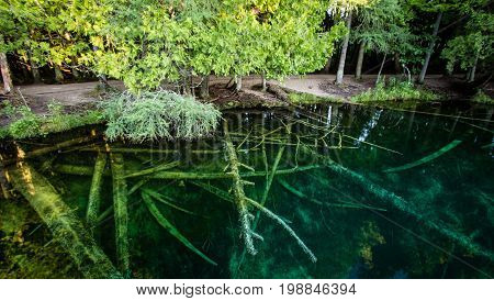 Michigan Largest Natural Springs Panorama. Michigan's largest spring is Kitch I ti ki pi in Palms Book State Park. The natural springs are located in the Upper Peninsula on the outskirts of Manistique