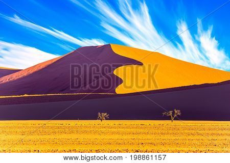 Namibia, South Africa. Sunset in the desert. The concept of extreme and exotic tourism. Sharp border of light and shadow over the crest of the dune