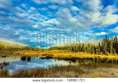 Cool cloudy morning in the Rocky Mountains. Patricia Lake among the firs and pines. The concept of extreme and ecotourism