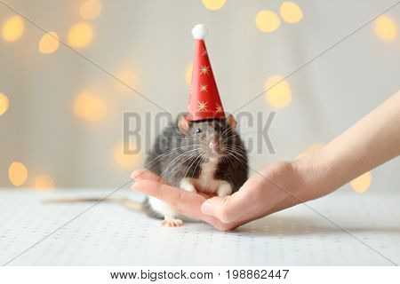 Female hand with cute rat in cap and defocused lights on background
