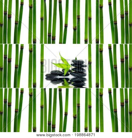 Still life with young bamboo sticks with green, leaf ,stacked stones,