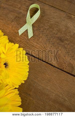 High angle view of spotted green Lymphoma Awareness ribbon with yellow gerbera flowers on wooden table