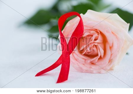 Close-up of red AIDS Awareness ribbon with pink rose on white background