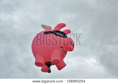 Bright Pink Pig with Wings and Shades Hot Air Balloon: Albuquerque, New Mexico Balloon Fiesta October 4, 2015