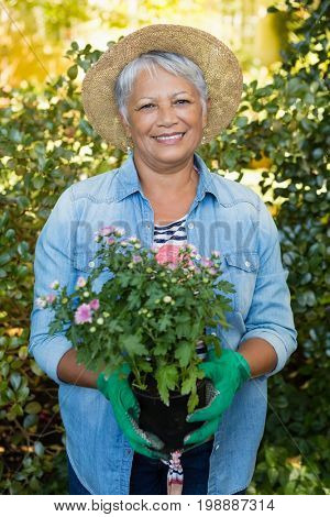 Portrait of senior smiling woman holding sapling plant in garden